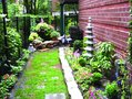 Photo from the garden of Mike Barnes and partner Bart Rarick. Courtesy of Barnes.