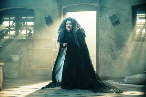 Knight at the Movies: Into the Woods; Mr. Turner; film notes