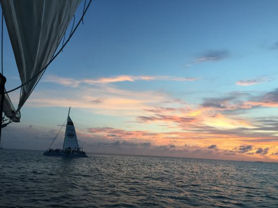 from Maximus gay sunset crusies key west