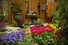 Chicagos-Blooming-Flower-Garden-Show-at-Navy-Pier-March-18-26-