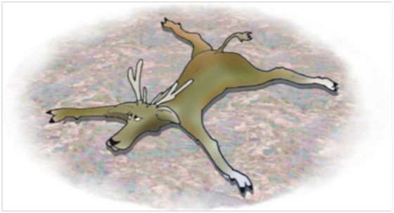 The Reindeer Conundrum: Part One