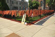 Parkland-students-launch-voter-registration-tour-from-Chicago