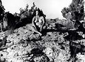 NatureSelfPortrait #11, 1996. Courtesy of the Estate of Laura Aguilar and the UCLA Chicano Studies Research Center.