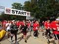 10K runners begin race. Photo by Carrie Maxwell
